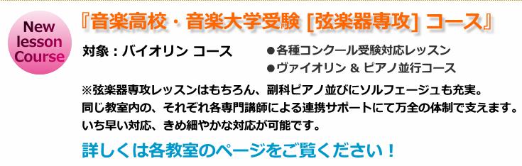 大阪 スウォナーレ、バイオリン・ピアノ音楽